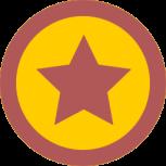 iconmonstr-star-7-icon-256(1)